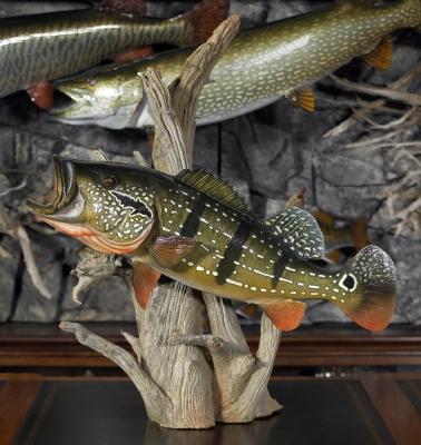 Fish Replica & Fish Mount Gallery - Advanced Taxidermy
