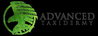 Advanced Taxidermy